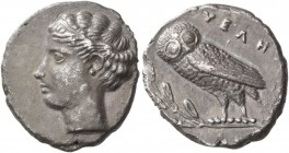 Velia. Drachm circa 440-425, AR 3.81 g. Head of nymph l., hair bound with fillet, wearing necklace. Rev. YEΛΗ Owl standing l., with closed wings, perc...