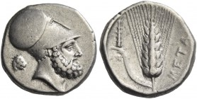 Metapontium. Nomos circa 340-330, AR 7.88 g. Head of Leucippus r., wearing Corinthian helmet; behind, lion's head r. Rev. Ear of barley with leaf to l...