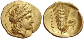Metapontium. 1/3 stater circa 330, AV 2.67 g. Diademed head of Hera (?) r., hair falling loosely behind her neck. Rev. Barley-ear with leaf at r.; abo...