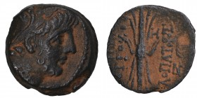 Seleukid Kingdom. Antioch. Antiochos IX Philopator (Kyzikenos) 114-95 BC. Bronze Æ, Condition Very Good 6.1 gr. 19 mm.