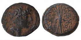 Seleukid Kingdom. Antioch. Antiochos IX Philopator (Kyzikenos) 114-95 BC. Bronze Æ, Condition Very Good 6.2 gr. 20 mm.