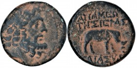 Seleucid Kingdom. Apamea / Antiochus VI. (144 - 142 BC) /