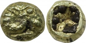 IONIA. Phokaia EL 1/12 Fourree Stater (Circa 625/00 BC). Obv: Stylized head of griffin left; seal to right. Rev: Incuse square punch. Bodenstedt E2; S...