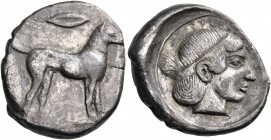 SICILY. Segesta. Circa 455-440 BC. Didrachm (Silver, 22 mm, 8.24 g, 7 h). Hound, the rivergod Krimisos, standing to right; above, barley grain. Rev. Σ...