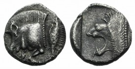 Mysia, Kyzikos, c. 450-400 BC. AR Diobol (9mm, 1.22g, 12h). Forepart of boar l.; to r., tunny upward. R/ Head of roaring lion l. within incuse square....
