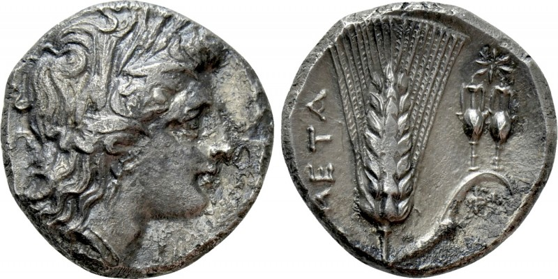 LUCANIA. Metapont. Didrachm (Circa 330-280 BC). 