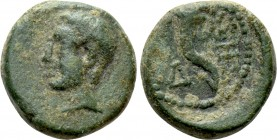 THRACE. Sestos. Ae (3th century BC). 