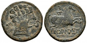 Ekualakos. Unit. 120-20 a.C. Area of Soria-Guadalajara. (Abh-969 var). (Acip-1848 var). Anv.: Male head to right, dolphin, behind Iberian letter E. Re...