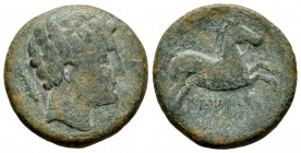 Iltirkesken. Half unit. 120-20 a.C. Area of Solsona. (Abh-1450). (Acip-1389). Anv.: Male head on the right, behind ear. Rev.: Horse with loose bridle ...