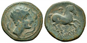 Iltirta. Half unit. 220-200 a.C. Lleida (Cataluña). (Abh-1466). (Acip-1259). Anv.: Male head to right, flanked by three dolphins. Rev.: Horse to the r...