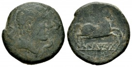 Iltirta. Half unit. 220-200 a.C. Lleida (Cataluña). (Abh-1472). (Acip-1265). Anv.: Male head to right, flanked by three dolphins. Rev.: Horse to the r...