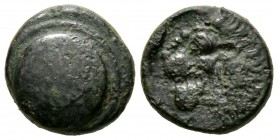 Cyprus, Marion, Stasioikos II (322-312 BC), Æ, 8.65g, 18mm. Shield with wreath / Lion head left. SNG Cop. -; BMC -. About Very Fine