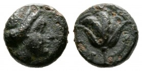 Cyprus, Paphos, Timocharis? (4th century BC), Æ, 1.53g, 9mm. Head of Aphrodite right / Rose. BMC 49 var. (head of Aphrodite left). Very Fine and Rare