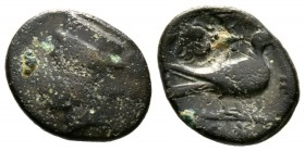 Cyprus, Paphos, Timocharis, c. 385 BC, Æ, 2.47g, 15mm. Head of Aphrodite(?) left, wearing ornamented polos / Dove standing right; faint inscription ab...