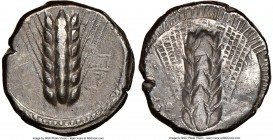 LUCANIA. Metapontum. Ca. 470-440 BC. AR stater (19mm, 6h). NGC Choice VF, scratches, brushed. MET (on right, retrograde upward), barley ear with six g...