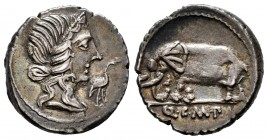 Caecilius. Q. Caecilius Metellus Pius. Denarius. 81 BC. Hispania. (Ffc-213). (Craw-374/1). (Cal-289). Anv.: Diademed head of Pietas right, stork befor...