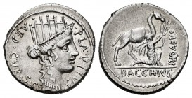 Plautius. A. Plautius. Denarius. 55 BC. Rome. (Ffc-1002). (Craw-431/1). (Cal-1130). Anv.: Turreted head of Cybele right, A. PLAVTIVS. before, AED. CVR...