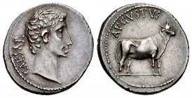 Augustus. Denarius. 21-20 BC. Samos. (Ffc-19). (Ric-475). (Cal-821). Anv.: CAESAR bare head of Augustus right. Rev.: AVGVSTVS above heifer right. Ag. ...