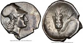 LUCANIA. Metapontum. Ca. 325-275 BC. AR diobol (13mm,1.15gm 2h). NGC XF 4/5 - 3/5. Head of Athena right, wearing Corinthian helmet pushed back on head...