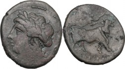 Greek Italy. Samnium, Southern Latium and Northern Campania, Compulteria. AE 19.5 mm. c. 265-240 BC. Laureate head of Apollo left; at right, Oscan let...