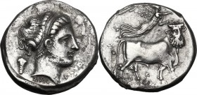 Greek Italy. Central and Southern Campania, Neapolis. AR Didrachm, c. 320-300 BC. Head of Parthenope right; behind, grape bunch; below, ΣΤΑ; before ne...