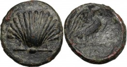 Greek Italy. Southern Apulia, Graxa. AE 15 mm. c. 250-225 BC. Cockle shell. / Eagle right on thunderbolt, wings open; in exergue, ΓΡΑ. HN Italy 773 va...