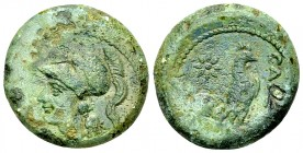 Cales AE20, c. 265-240 BC 