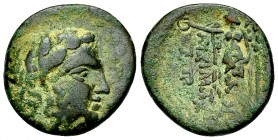 Lysimacheia AE18, c. 309-281 BC 