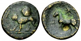 Evagoras II AE16, Lion/horse 