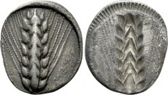 LUCANIA. Metapont. Didrachm (Circa 540-510 BC). 
