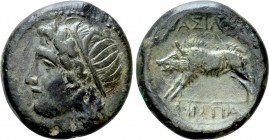 SICILY. Akragas. Phintias (Tyrant, 287-279 BC). Ae. 
