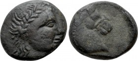 SKYTHIA. Tyra. Ae (Circa 310-300 BC). 