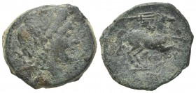 Northern Apulia, Salapia, c. 225-210 BC. Æ (21mm, 6.73g, 1h). Poullos, magistrate. Laureate head of Apollo r. R/ Horse prancing r.; trident above. HNI...