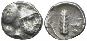 Southern Lucania, Metapontion, c. 340-330 BC. AR Stater (17mm, 5.21g, 12h). Helmeted head of Leukippos r.; to l., lion head r. R/ Barley ear with leaf...