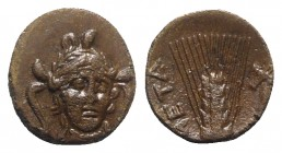 Southern Lucania, Metapontion, c. 300-250 BC. Æ (15mm, 3.80g, 12h). Head of Athena facing slightly r., wearing triple-crested helmet. R/ Barley ear; c...