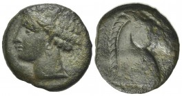 Carthaginian Domain, Sardinia, c. 264-241 BC. Æ (18mm, 4.30g, 9h). Wreathed head of Kore-Tanit l. R/ Head of horse r. Cf. Piras 1; SNG Copenhagen (Afr...
