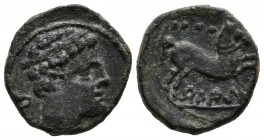 BELIGIOM (. Quadrant. (Ae. 2.75g \/ 15mm). 180-20 BC Anv: Diademic head to the right, behind Iberian letter Be. Rev: Horse jumping to the right, above...
