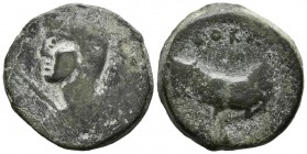 BORA (Alcaudete, Ja\u00e9n). Semis. (Ae. 16.23g \/ 34mm). 100-50 BC Anv: Female bust to the left, in front of the scepter. Rev: Bull to the left, abov...