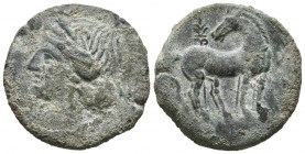 CARTAGONOVA (Cartagena, Murcia). Tracing. (Ae. 8.08g \/ 22mm). 220-215 BC Anv: Head of Tanit to the left. Rev: Horse standing with the head turned, be...
