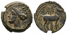 CARTAGONOVA (Cartagena, Murcia). 1\/2 Tracing. (Ae. 2.78g \/ 17mm). 220-215 BC Anv: Head of Tanit to the left. Rev: Horse standing to the right, behin...