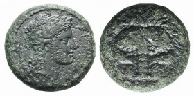 Bruttium, Rhegion, c. 351-280 BC. Æ (21mm, 9.76g, 6h). Facing lion's mask. R/ Laureate head of Apollo r.; uncertain symbol (lyre?) behind. HNItaly 253...