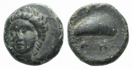 Aeolis, Gyrneion, 4th century BC. Æ (10mm, 1.94g, 1h). Laureate head of Apollo facing slightly l. R/ Mussel shell. SNG von Aulock 7689. Green patina, ...