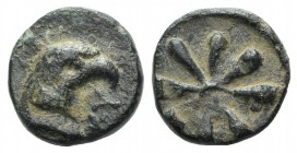 Aeolis, Kyme, c. 3rd century BC. Æ (10mm, 1.28g). Eagle head r. R/ Rosette with eight petals. Unpublished in the standard references. Rare, green pati...