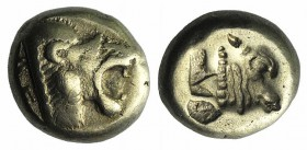 Lesbos, Mytilene, c. 521-478 BC. EL Hekte – Sixth Stater (9mm, 2.43g, 6h). Head of roaring lion r. R/ Incuse head of calf r., within rectangular punch...