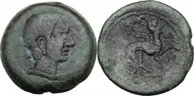 Hispania. Castulo. AE As, 130-100 BC. Head of youthful male right. / Sphinx standing right, raising left foreleg; to right, star. SNG Cop. 207; SNG Mü...