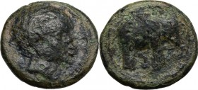 Greek Italy. Etruria, Arretium (?) The Chiana Valley. AE 18 mm, 208-207 BC. Head of an African male right. / Elephant right. HN Italy 69; SNG ANS 39. ...
