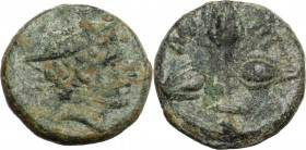 Greek Italy. Southern Lucania, Metapontum. AE 13 mm, 300-250 BC. Head of Hermes right, wearing petasos. / Three grains of barley. HN Italy 1677. AE. 1...