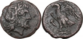 Greek Italy. Bruttium, The Brettii. AE Unit, 214-211 BC. Head of Zeus right, laureate. / Eagle standing left on thunderbolt, wings open; to left, corn...