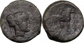 Sicily. Segesta. AE Hexas, 416-415 BC. Head of nymph right. / Hound right; above and below, pellet; to right, stylized twig. CNS I 12. AE. 7.92 g. 20....
