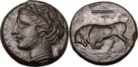 Sicily. Syracuse. Hieron II (274-216 BC). AE 18 mm. Head of Kore left, wearing wreath. / Bull butting left; above, club. CNS II 191. AE. 5.71 g. 18.00...